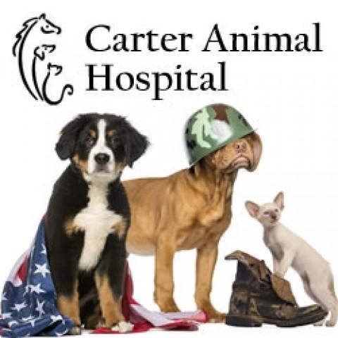 Carter Animal Hospital