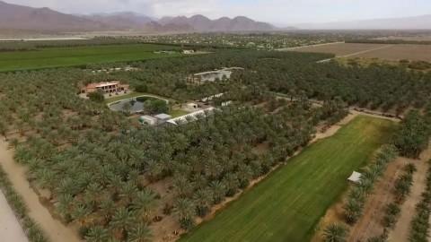 Date Farm Oasis